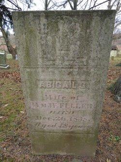 Abigail G Fuller