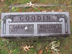Sarah C Goodin