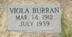 Viola <i>Burran</i> Beal