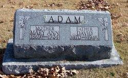 David Adam