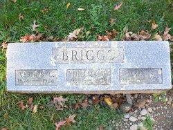 Vernon C. Briggs