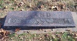 Andrew J Land