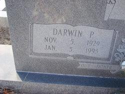 Darwin Paul Akins