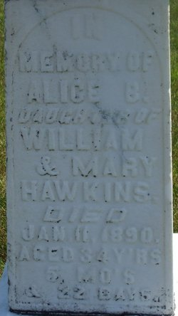 Alice B Hawkins