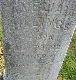 Amelia Ann <i>Gildersleeves</i> Billings