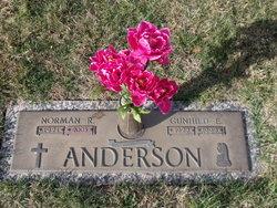 Gunhild Elizabet Gunny <i>Anderson</i> Anderson