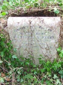 Hephzibah Rayment