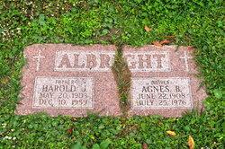 Agnes B Albright