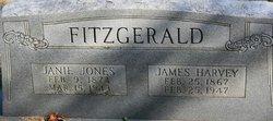 James Harvey Fitzgerald