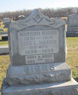 Ross Harris Biggs