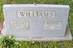 Bertine M. <i>Valinski</i> Williams