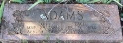 Lacie Adams