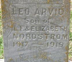 Leo Arvid Nordstrom