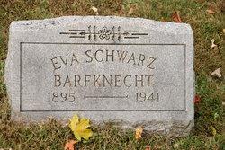 Eva <i>Schwarz</i> Barfknecht