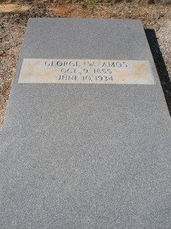 George William Amos