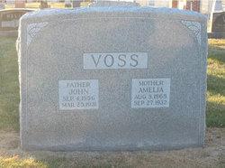 John Voss