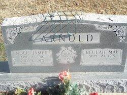 Noel James Arnold
