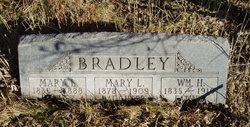 Mary Louisa Bradley
