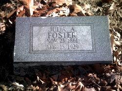 Julia Ann <i>Mahan</i> Foster