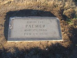 David Lee Palmer