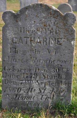 Catherine <i>Schenck</i> Bamberger