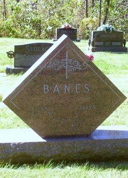 Allen J Banes