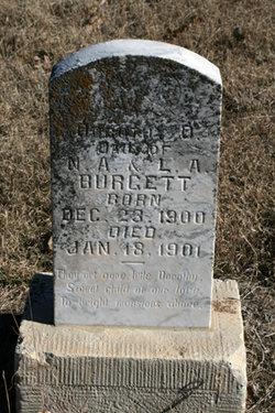 Dorothy D. Burgett
