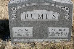 A. L. Dick Bumps
