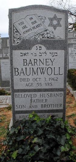Barney Ber Leib Baumwoll