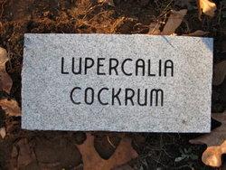 Lovale Lupercalia <i>Stinnett</i> Cockrum