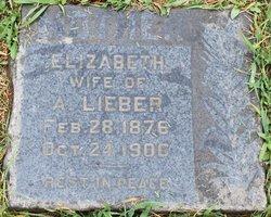 Elizabeth Lieber