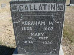 Abraham W Gallatin