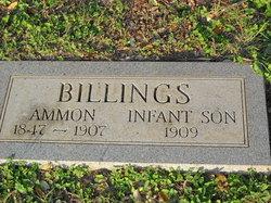 Ammon Billings