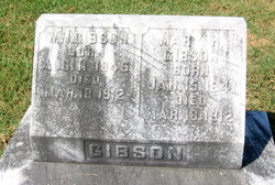 W M Gibson