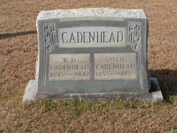 W. D. Cadenhead