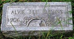 Alvie Lee Blevins
