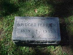 Bridget Ferrick