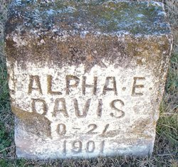 Alpha E Davis