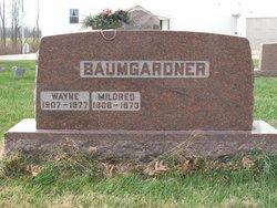 Wayne Baumgardner