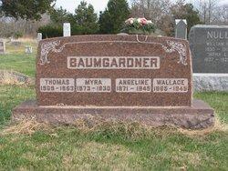 John Wallace Baumgardner