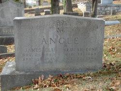 James Eli S. Angle