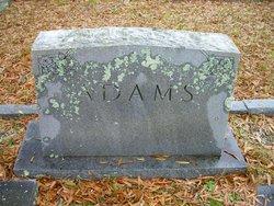 C. Paul Adams