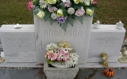 Emily Aleene <i>Nettles</i> Anderson