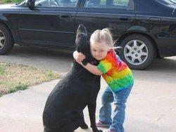 Abbey Dog