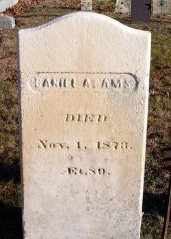 Daniel D Adams