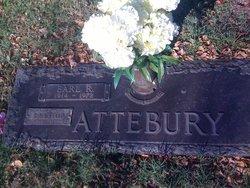Robert Earl Attebury