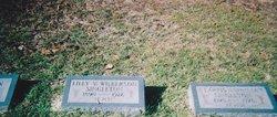 Lilly Virginia <i>Wilkerson</i> Singleton
