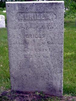 Aurilla <i>Norton</i> Briggs