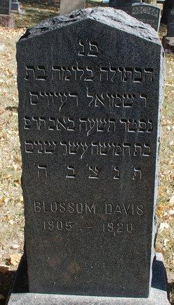 Blossom Davis