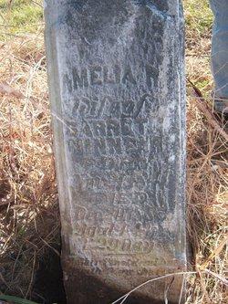 Amelia R Minnear
